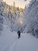 Mt. Baker National Recreation Area - John on skis