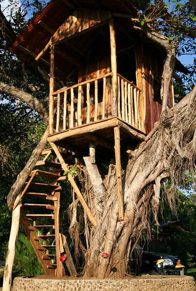 The tree house, Juan's new add-on to his parents house...<br /> La casita en el arbol, la nueva adicion, hecha especialmente para Juan en la casa de campo de sus padres...  con vista a las monta~as, para no perderse los atardecers, como el queria.