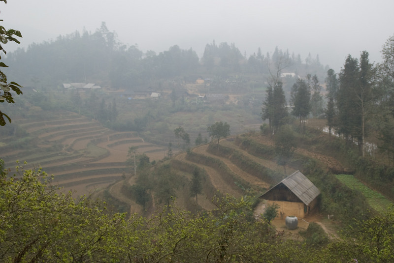 Terraced rice fields -0485