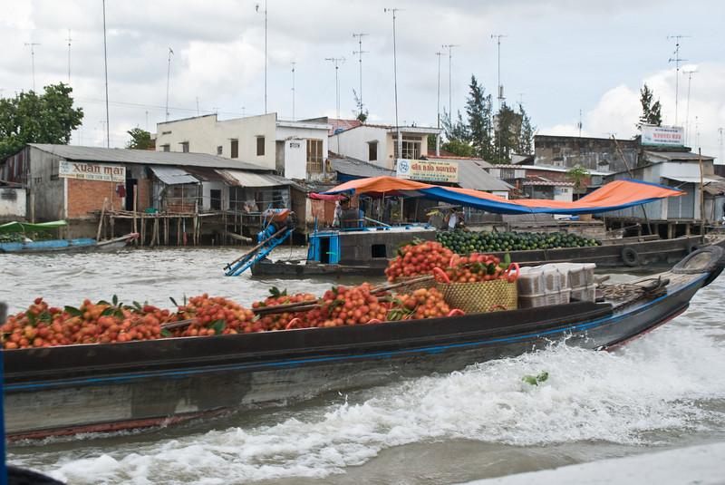2008_02_24_Mekong_Delta-2832