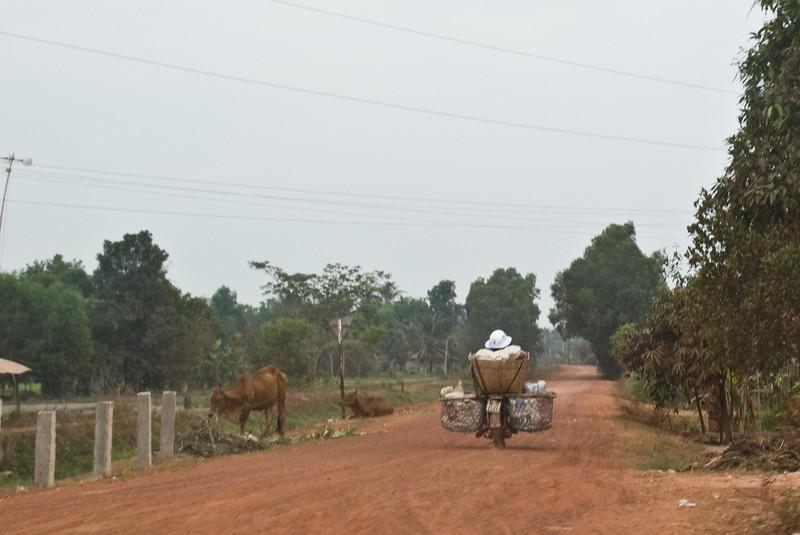 Road from Saigoni to Mekong-2604