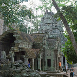 2008_02_27_cambodia_Ta_prohm-4600