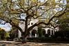 Beautiful Architecture in Charleston South Carolina