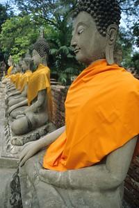 Ayuthaya stone buddha rows with gold wrap, Thailand