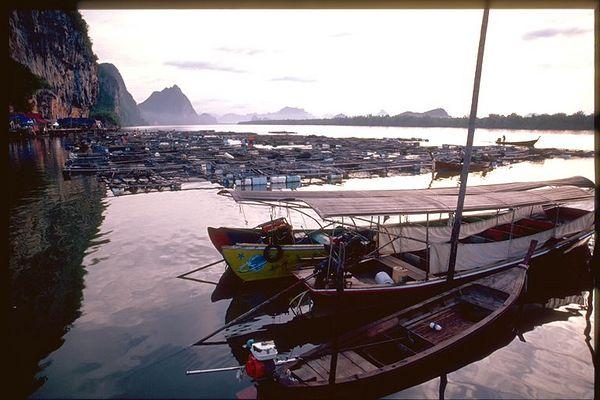 Muslim fishing village, Thailand sunrise
