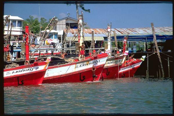 Fishing boats in Krabi, Thailand