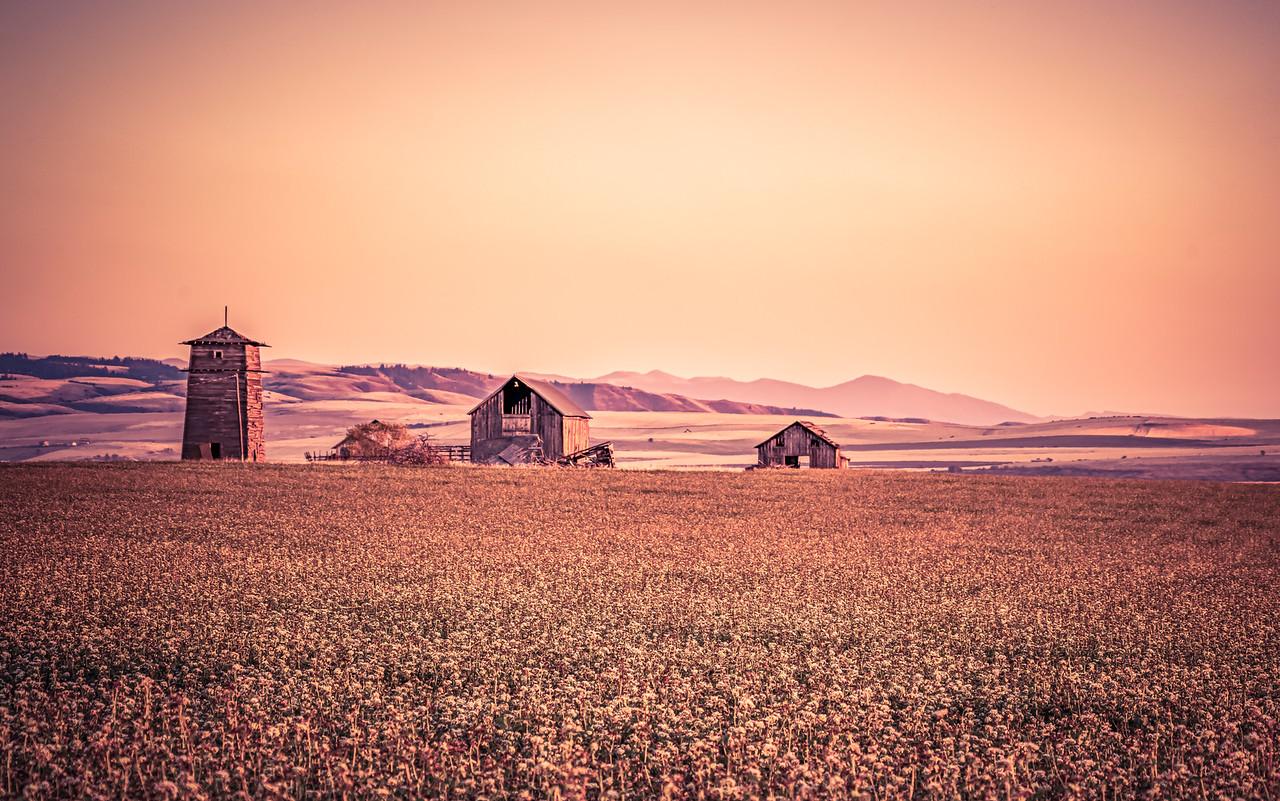 Idaho farm buildings
