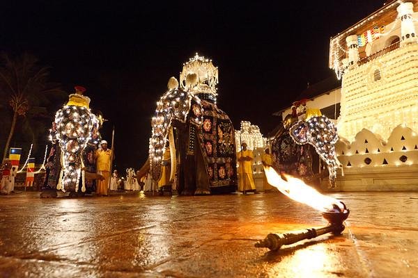Festivals-036