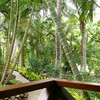 A panoramic view from our bure's deck, #1