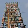 In Nadi, a Hindu temple.