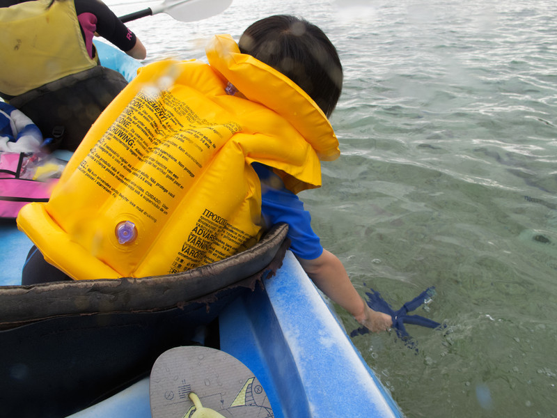 Taking the blue seastar for a ride