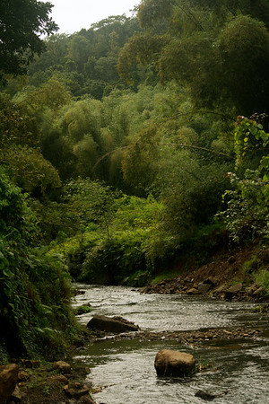 River through Fiji highlands