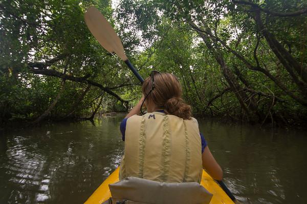 Girl kayaking through mangroves
