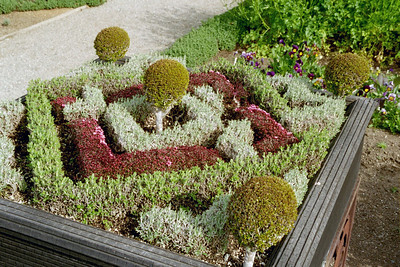 Knot garden (yes it is; not; is; not; ...)
