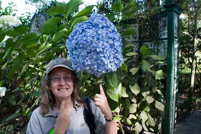Ellen with one mongo hydrangea