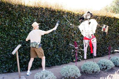 Steve takes on the scarecrow