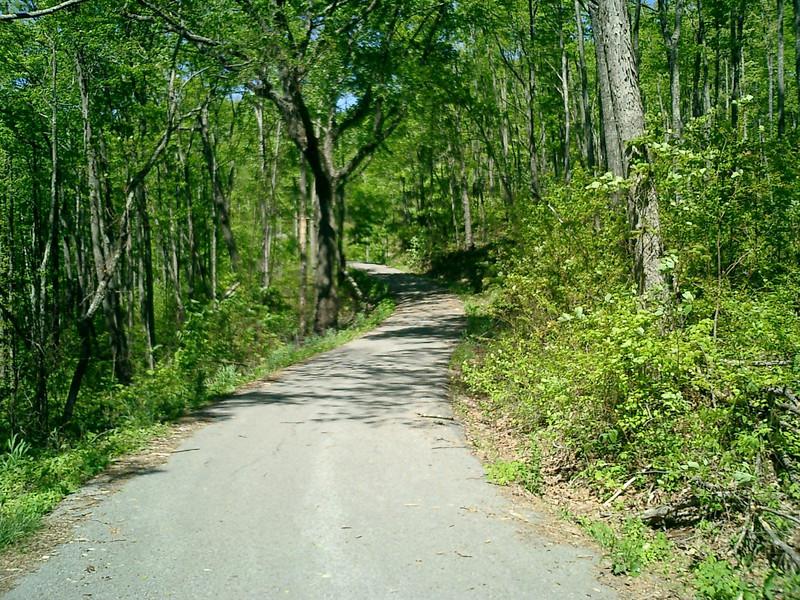 Little Shepherd's Trail in KY