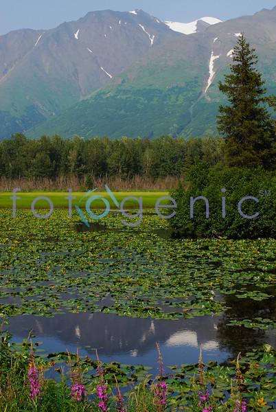 View from Seward Highway, Alaska