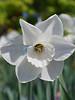 Lewis Ginter Botanical Gardens, Richmond, Virginia