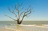 Beach at Botany Bay Plantation, Edisto Island, South Carolina