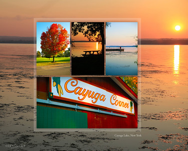 Cayuga Lake NY scenes