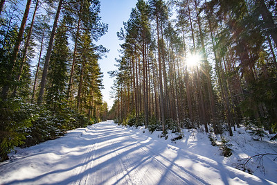 FINLAND2019-23