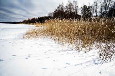 FINLAND2019-22