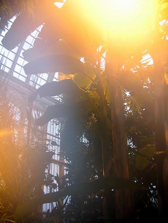 Helsinki Botanic Gardens