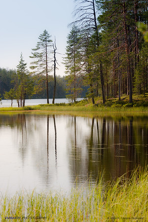Reflections in the lakes of Hossa,  Oulu (1). Finland.