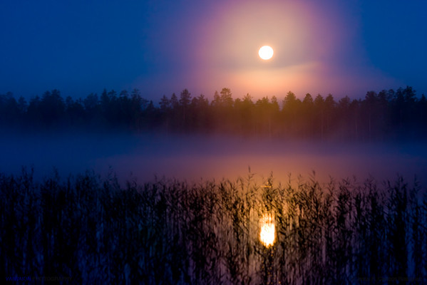 Yellow moon over the lake (1). A unique experience: being awakened in the middle of the night by the sounds of nocturnal animals, I got out of the hut and just out there discovered that the evening had presented me a splendid full moon that, adorned by the mists at night, perched over the lake. And an absolute solitude and silence.  Hossänjarvi, Oulu. Finland.