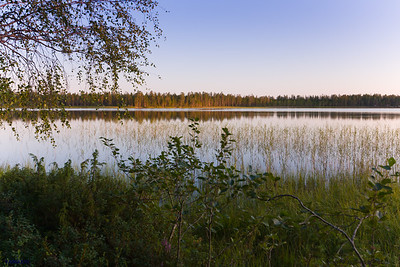 A view of Hossanjärvi from my hut, during the long evening. The sun lit up the distant pines at the background. Finland.