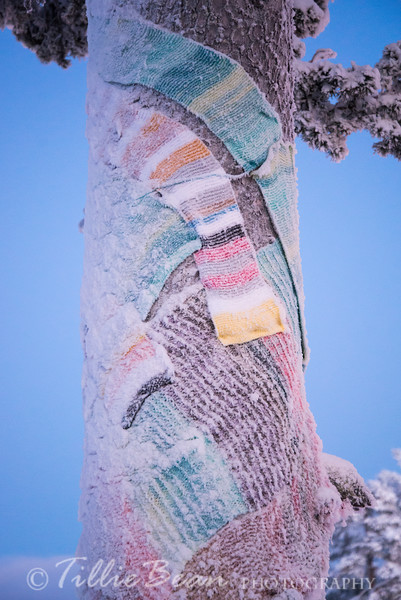 Scarfs for the tree
