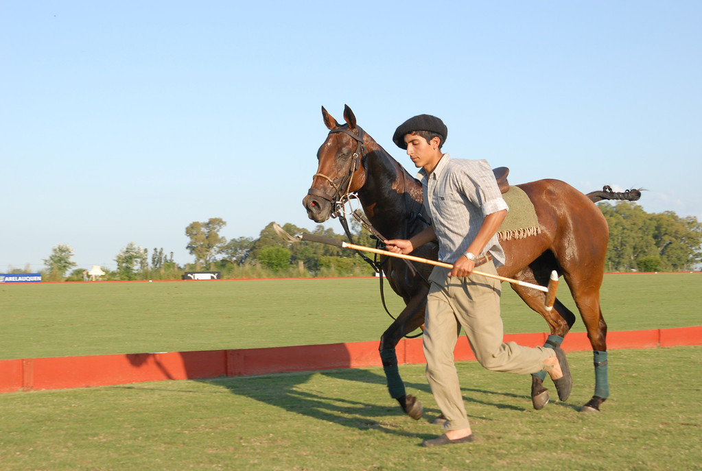 Argentean boy with horse