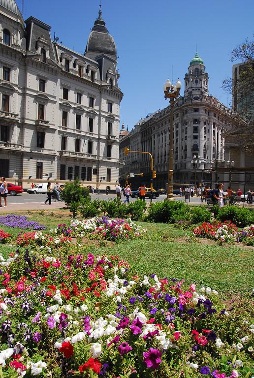 Flowers and Buildings in BA
