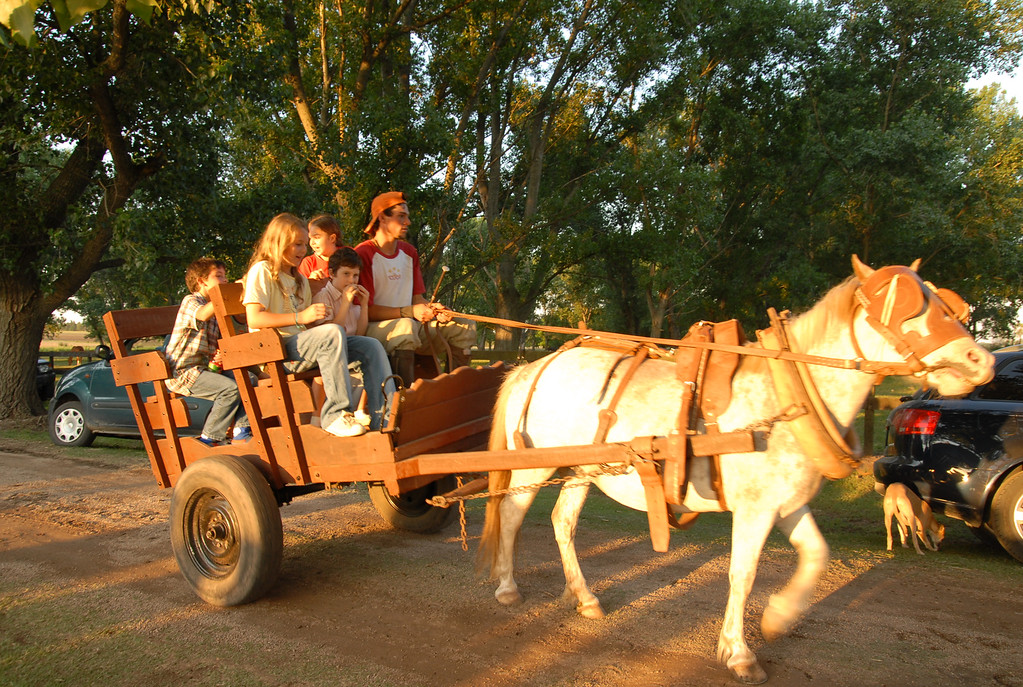 Kids on a horse cart ride