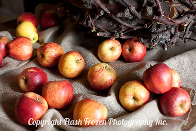Apples in the Kitchen of Le Chateau