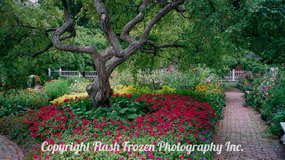 Public Gardens 2000 Portsmouth, New Hampshire