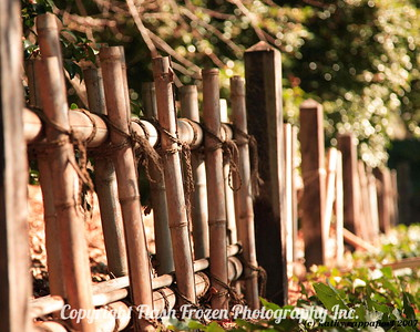 Rustic Fence 2007