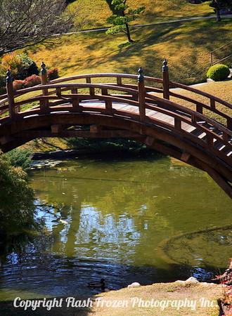 Japanese Gardens 2007 Huntington Library Pasadena, California