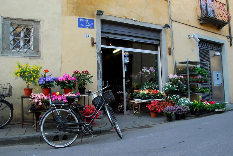 Lucca9c