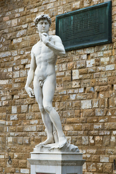 Copy of Michelangelo's David statue, Piazza della Signoria, in Florence, Firenze, Italy