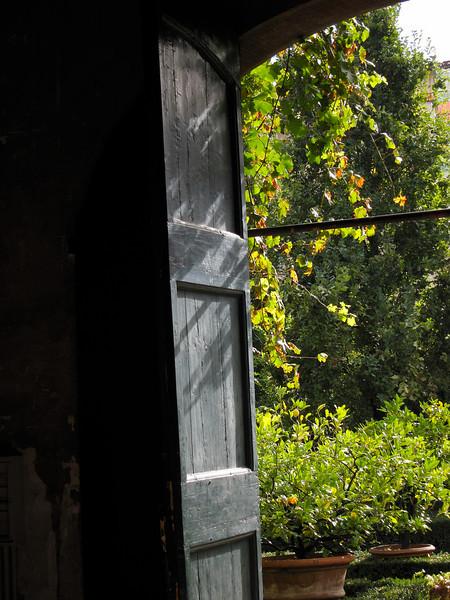 Palazzo Corsini, orange tree storage shed