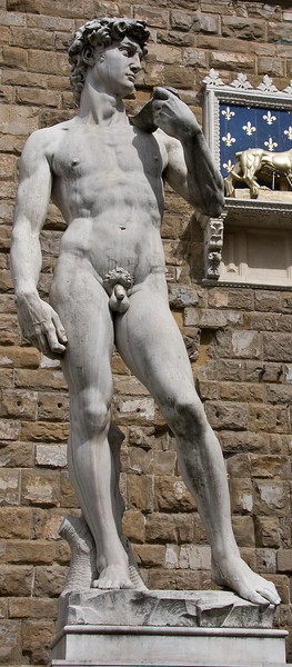 """The David"" the copy standing where the original used to in Piazza della Signoria (It doesn't do justice to the original!)"