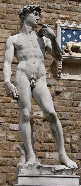 """The David"" the copy standing where the original used to in Piazza della Signoria (It doesn't do justice to the original!)"