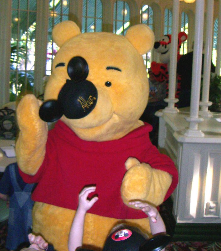 Pooh Bear with Alex's Hat