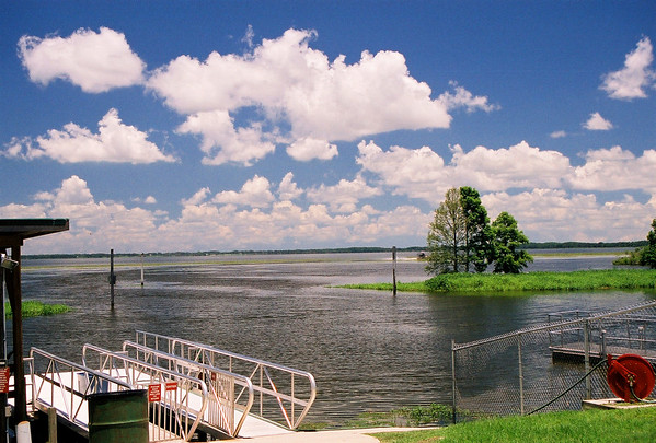 2005 Florida