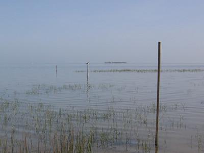 The bay side, Cape San Blas
