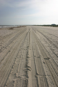 Beach Tracks at Dusk