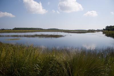 St Marks National Wildlife Reserve