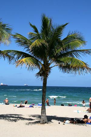 Las Olas Boulevard and Fort Lauderdale Beach / May 31, 2008